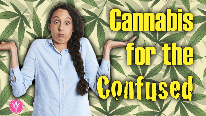 Cannabis for the Confused